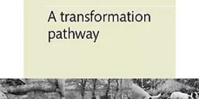 Cover: A transformation pathway