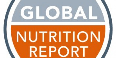 Global Nutrition Report logo