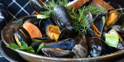 Image: RitaE, Mussels Mussel Seafood, Pixabay, Pixabay Licence