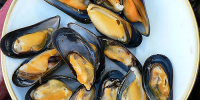 Image: Claude Covo-Farchi, Mussels at Trouville fish market, Wikimedia Commons, Creative Commons Attribution-Share Alike 2.0 Generic