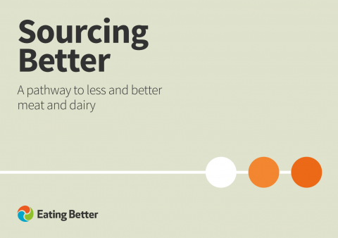 Sourcing Better report cover