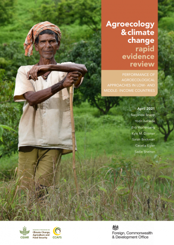 Agroecology & climate change rapid evidence review: Performance of agroecological approaches in low- and middle-income countries