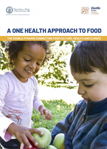 A One Health approach to food - the Double Pyramid connecting food culture, health and climate