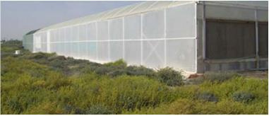 Image: Raffa be, Seawater Greenhouse in Tenerife two years after being installed, Wikimedia Commons, Creative Commons Attribution 3.0 Unported